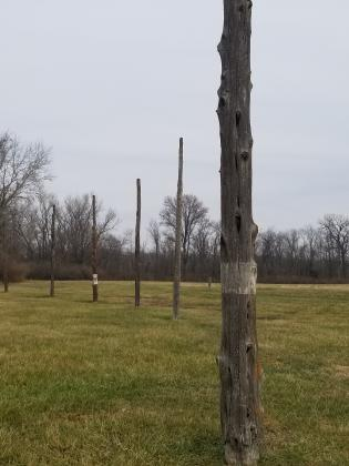Woodhenge at Cahokia Mounds State Historic Site